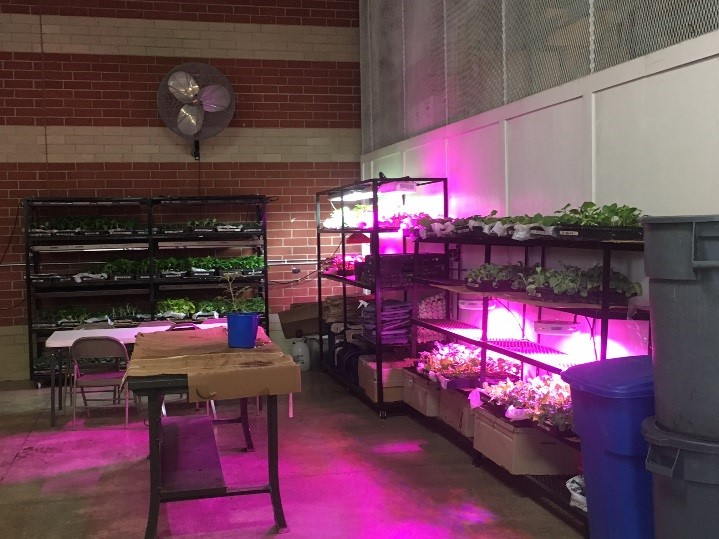 TCI Aquaponics Adventure – First in the North East Region