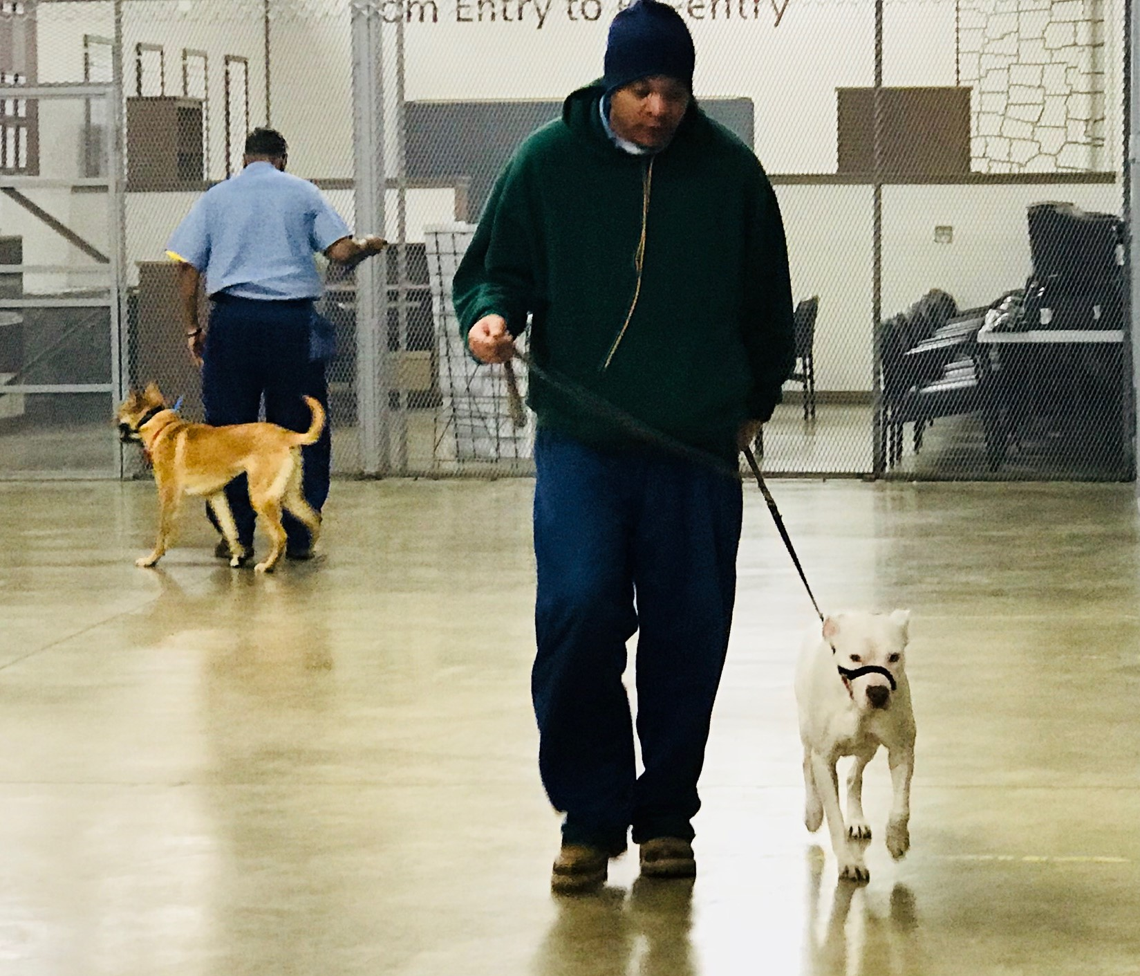 Volunteers Donate Time to Train Dogs in Prison
